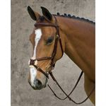 Dy'on® Figure-8 Bridle