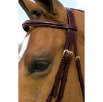DY'ON FIGURE 8 BRIDLE