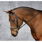 Dover Saddlery® Premier Classic Dressage Bridle