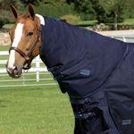 Rider's International® by Dover Saddlery® Supreme Neck Cover
