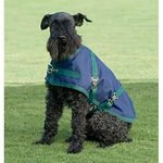 Rider's International® by Dover Saddlery® Dog Turnout Sheet