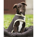 Horseware® Ireland Rambo® Waterproof Dog Blanket