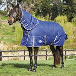 WeatherBeeta® ComFiTec™ Free Detach-A-Neck Medium Weight Turnout Blanket with FREE Halter