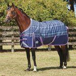 WeatherBeeta® ComFiTec™ Plus Dynamic Standard Neck Medium Weight Turnout Blanket