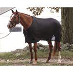 Dover Saddlery® Wickaway Cooler