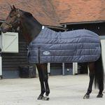 WeatherBeeta® ComFiTec™ Medium/Lite Blanket Liner