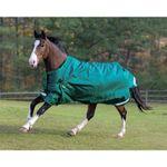 Shires StormCheeta 200G Blanket & Neck Set