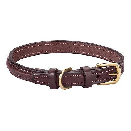 Raised Dog Collar