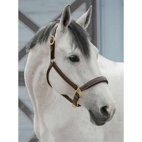 Dover Saddlery® InDulge™ Fancy-Stitched Halter