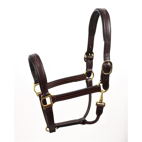 Perri's® Fancy-Stitched Padded Leather Halter