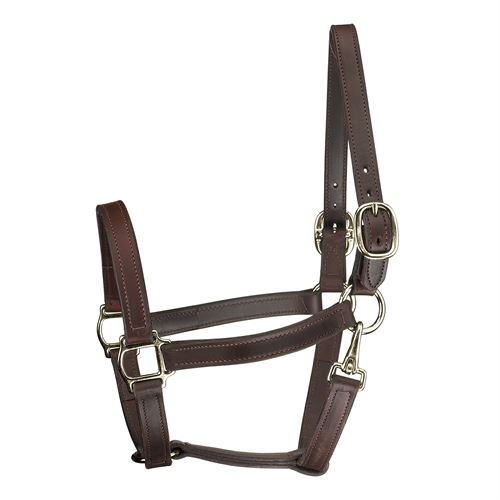 Perri's® Track Style Turnout Halter with Snap