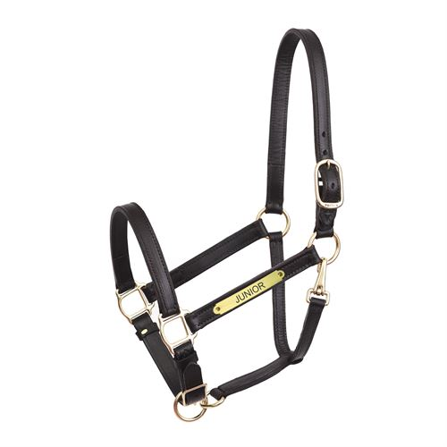 Perri's® Yearling Leather Turnout Halter
