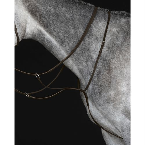 Collegiate® Running Martingale IV