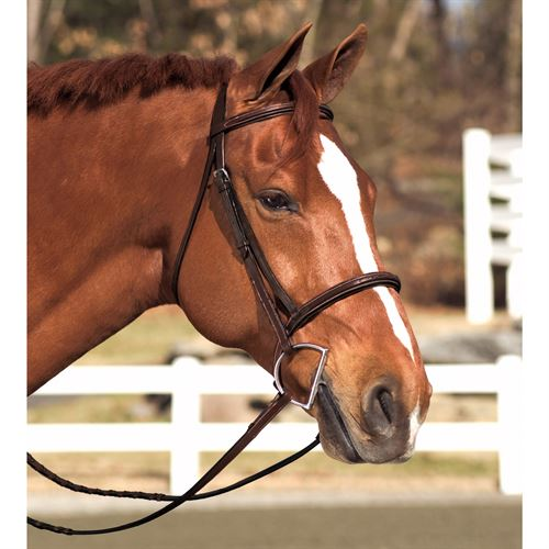 Circuit® by Dover Saddlery® Snaffle Bridle