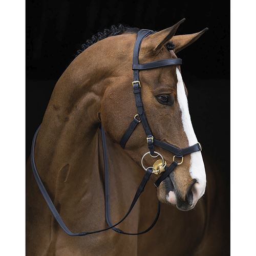 The Rambo® Micklem® Original Multibridle