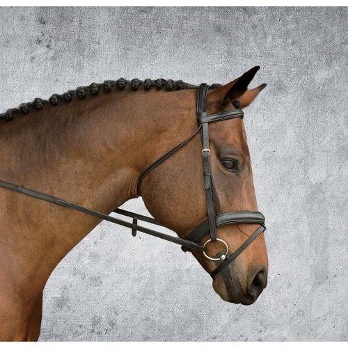 Dover Saddlery® Single Crown Padded Dressage Bridle