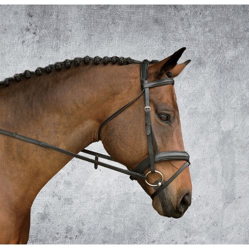 Dover Saddlery® Single Crown Padded Dressage Bridle