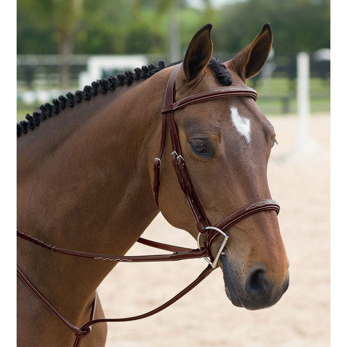 Dy On Classic Hunter Bridle