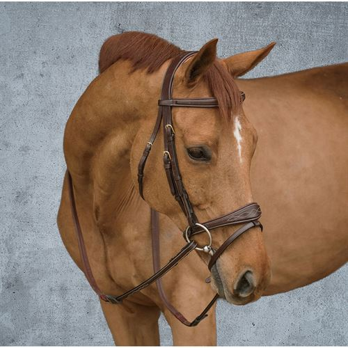 Dyon® Anatomic Bridle