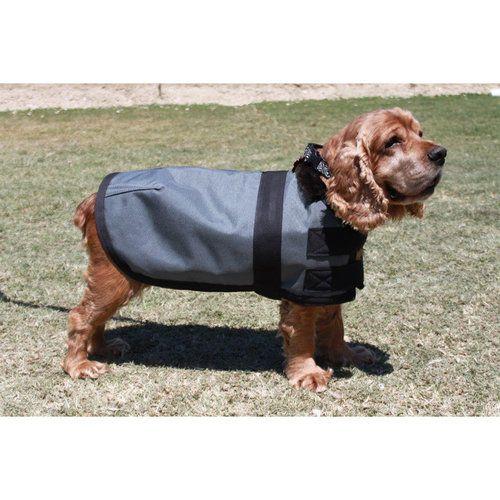Blue Ribbon Custom Winter Dog Jacket - XXS, XS, S, M