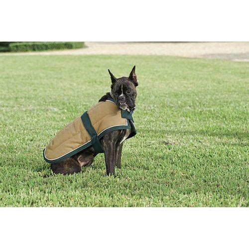 Blue Ribbon Custom Quilted Dog Jacket