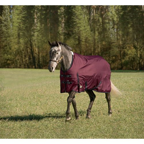 Riders International Supreme Heavyweight Turnout Blanket - Navy Plaid