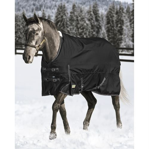 Rider's International by Dover Saddlery® Medium Weight Supreme Turnout Blanket