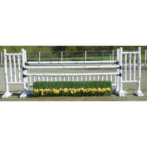 Birch Oxer with Hedge - 10
