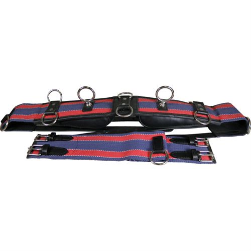 Deluxe Dual Terret Training Surcingle