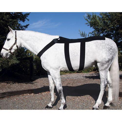 Ice Horse® Pony Back Blanket