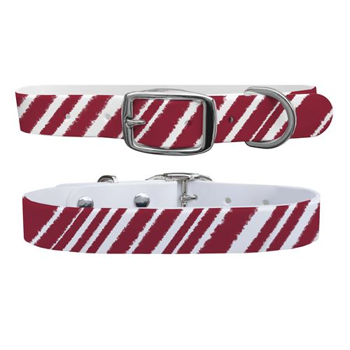 C4 Novelty Medium Dog Collar