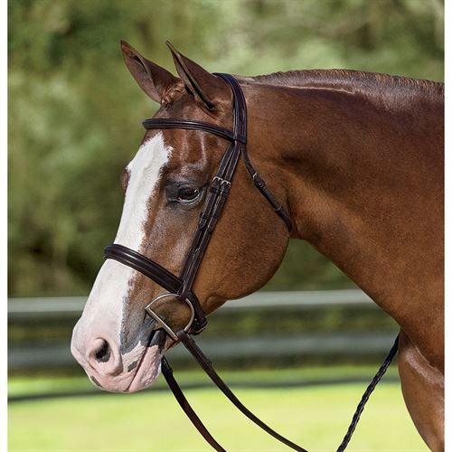 5793dc8d32817 Ovation® Quarter Horse Plain Raised Padded Bridle