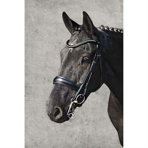 Schockemöhle Milan Anatomical Double Bridle