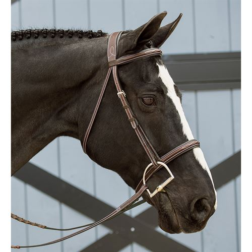 Dover Saddlery® InDulge™ Fancy-Stitched Bridle
