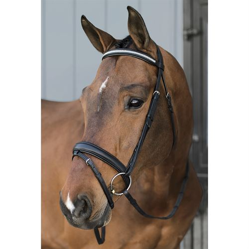 Dover Saddlery® InDulge™ Classic Dressage Bridle