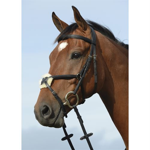 Collegiate® Syntovia+ Padded Raised Figure 8 Bridle