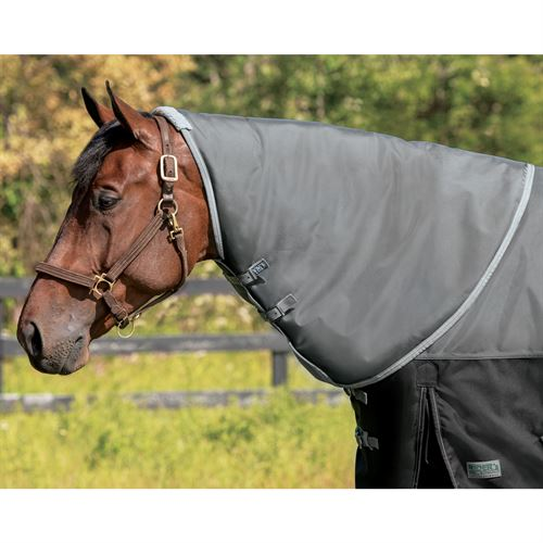 NorthWind® by Rider's International® Plus Medium-Weight Neck Cover