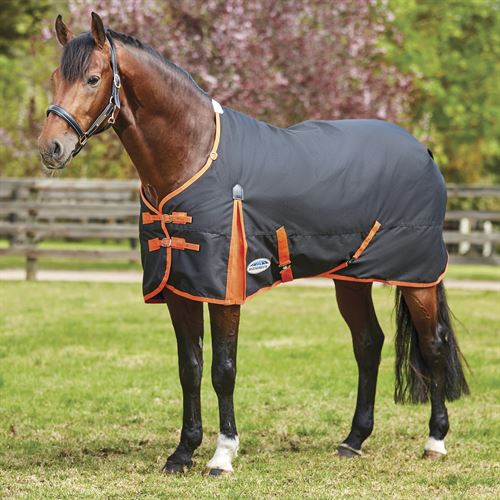 WeatherBeeta® ComFiTec™ Essential Solid Medium Weight Turnout Blanket