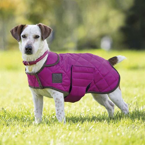 Shires Digby & Fox Quilted Dog Coat