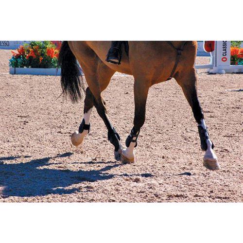 Equestrian Services International (ESI) Arena Footing
