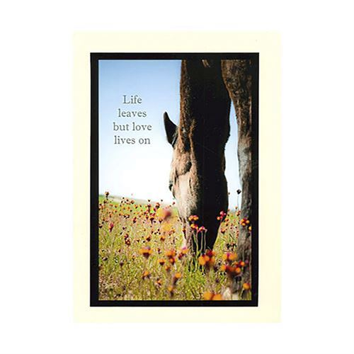 Life Leaves But Love Lives On Sympathy Note Card