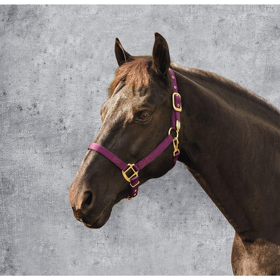 HEAVY RED NYLON FULL SIZE HORSE SIZE SAFETY HALTER LEATHER TAB BREAKAWAY DESIGN