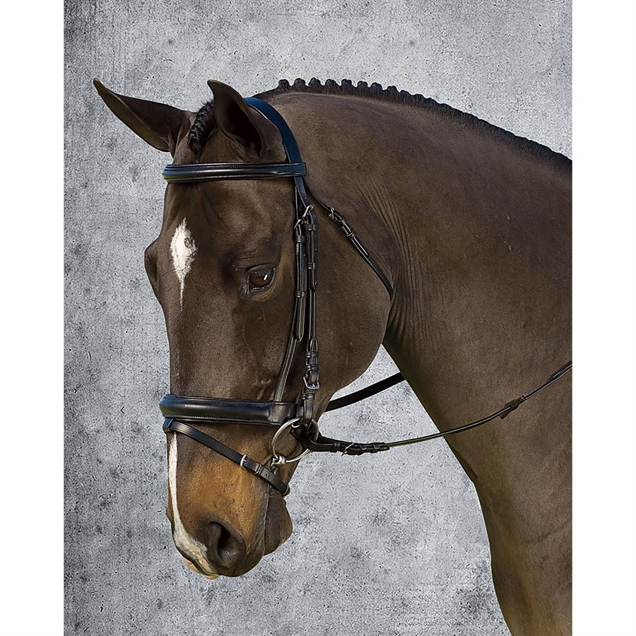 Dover Saddlery® Crank Dressage Bridle
