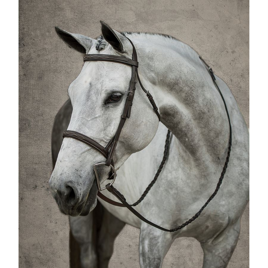 a109a0bb2d3c2 Suffolk® by Dover Saddlery® Hunter Bridle