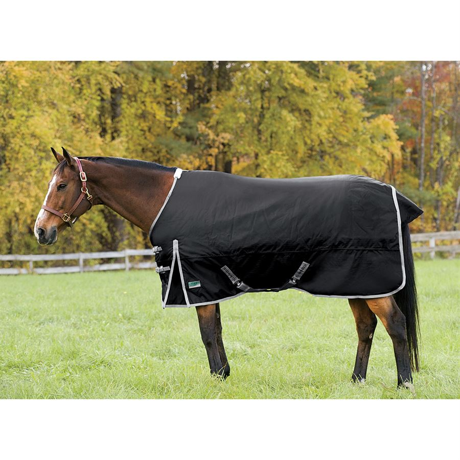 Rider S International By Dover Saddlery Supreme Heavyweight Turnout Blanket