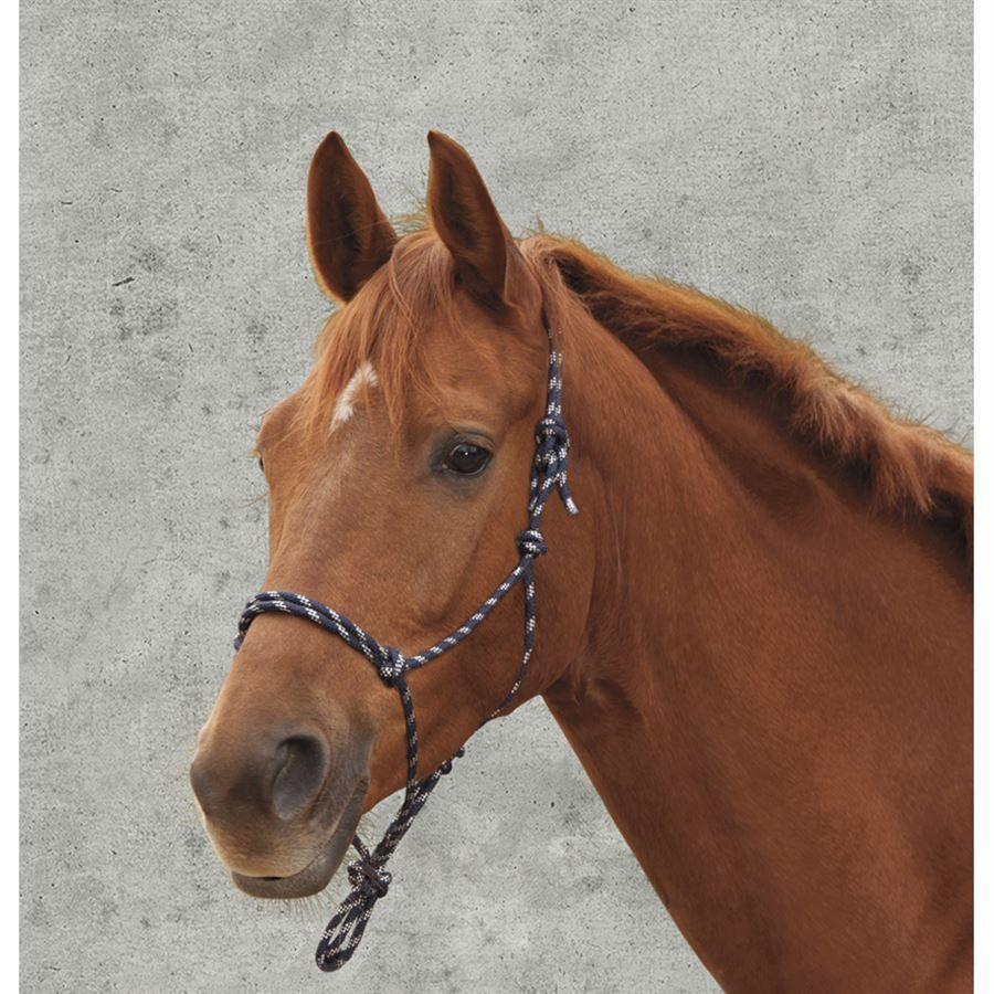 Good Boy Rope Halter For Natural Horsemanship Training