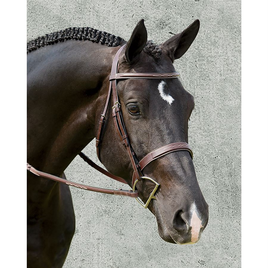 Dy'on® Wide Nose Hunter Bridle