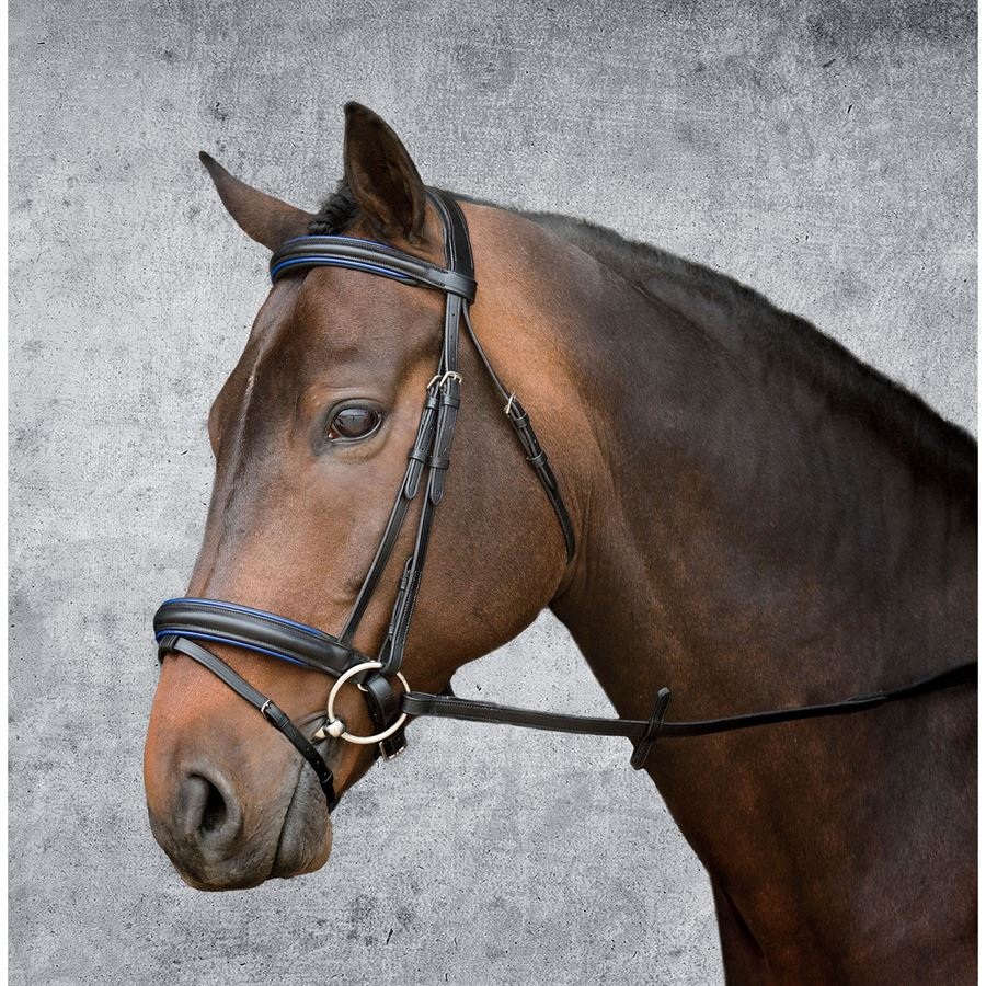 Suffolk 174 By Dover Saddlery 174 Single Crown Classic Dressage