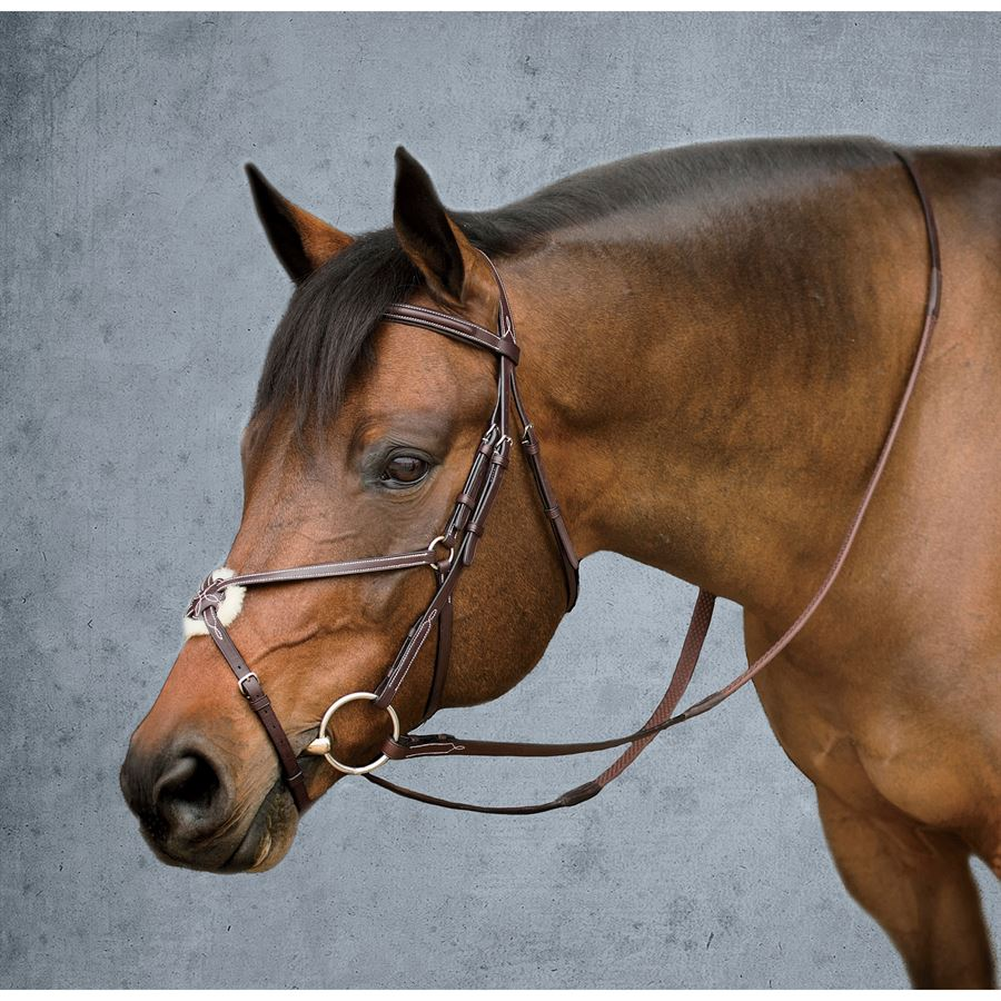 Dover Saddlery Premier Figure 8 Bridle Dover Saddlery