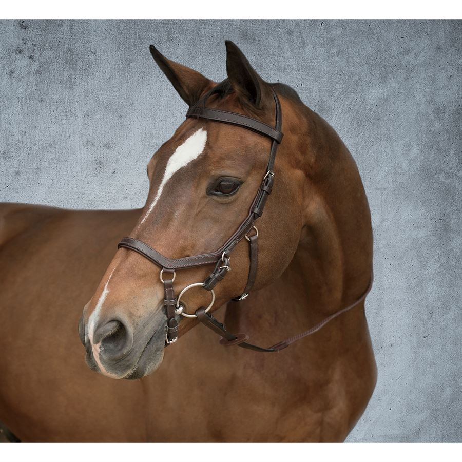 Rambo 174 Micklem Competition Bridle Dover Saddlery